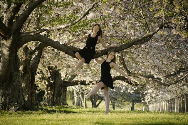 Jade Primicias and Sarah Borum of Tennessee Ballet Theater