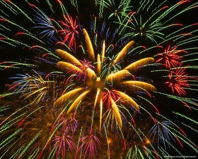 Star Spangled Celebration at Shelby Farms