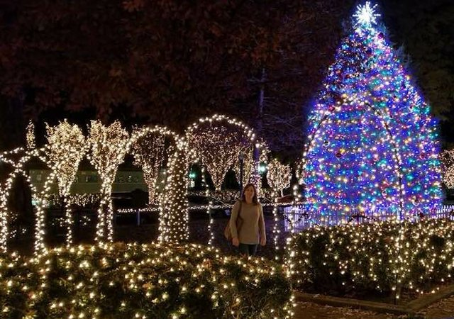Christmas in Collierville