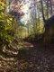 PhotoByAnnaTraverse_Trail-of-TearsToday.jpg