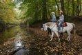 PhotoArkansasStateParks_Village_Creek_Horseback_112016_CHC_6671.jpg