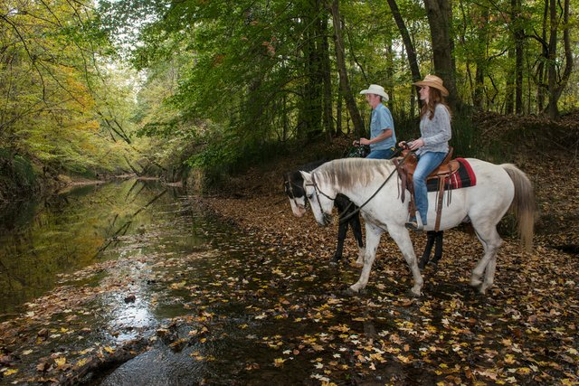PhotoArkansasStateParks_Village_Creek_Horseback_112016_CHC_6671.jpg