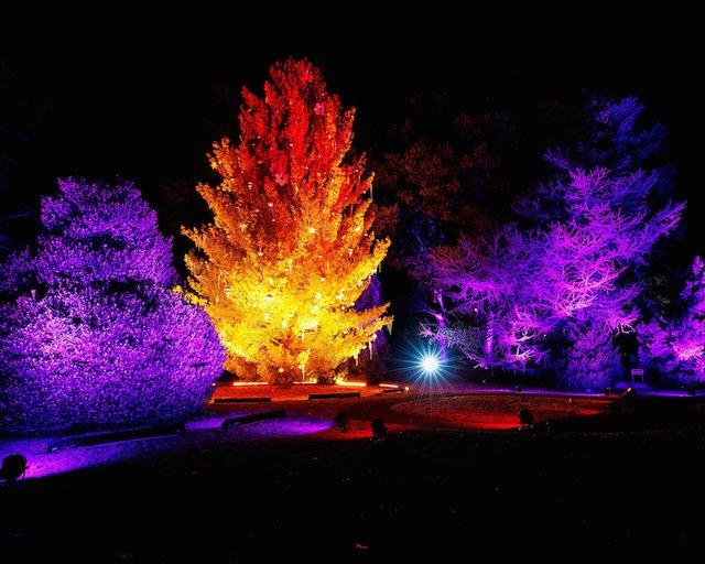 Holiday Wonders At the Garden, Memphis Botanic Garden