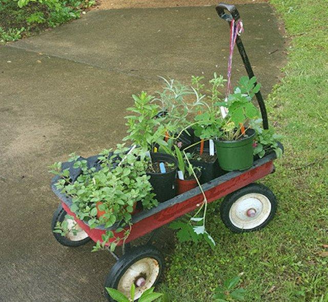 Plant Sales at Lichterman and Memphis Botanic Garden