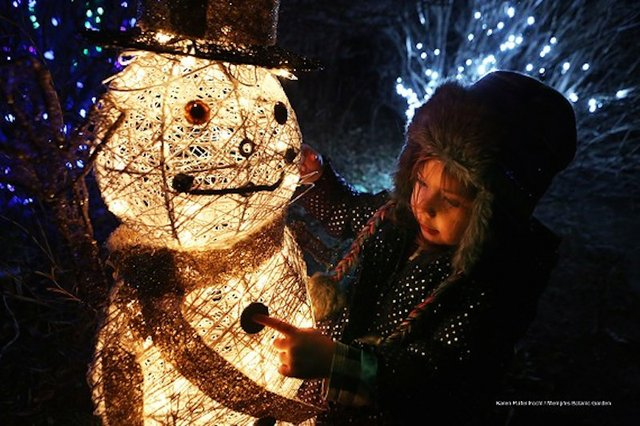Holiday Wonders at the Garden, Memphis Botanic Garden