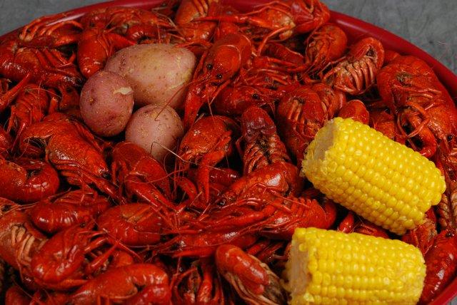 Jubilee's Mardi gras In Memphis Carwfish Boil and ETW5K, Memphis Catholic High School