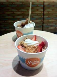 yogurtsm.jpg