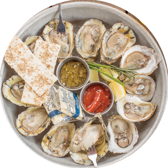 Saltwater_Crab_51A1667.png