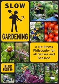 book-cover-sm.jpg