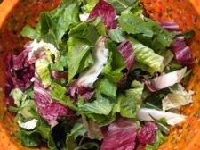 dandelion-saladsm.jpg