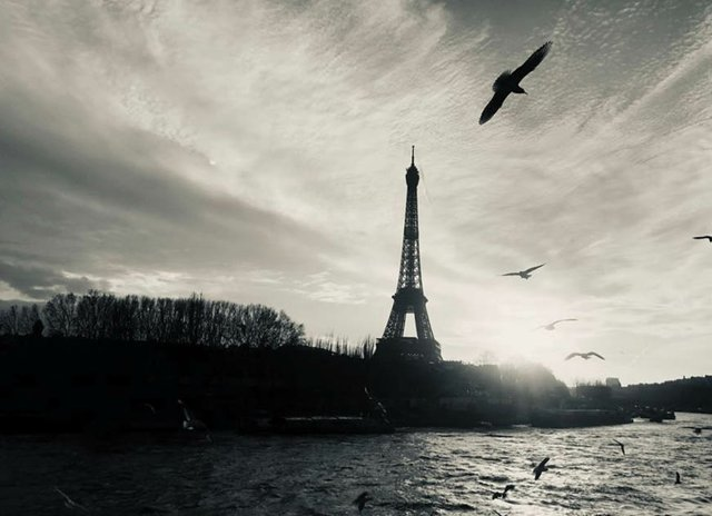 Paris-AET.jpg