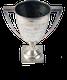 DSC_0854-SilverCup.png