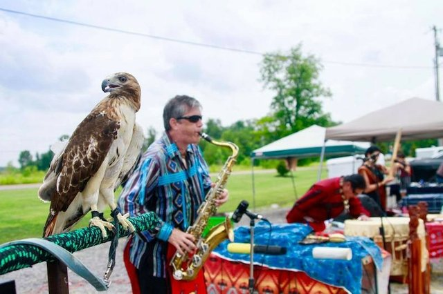 Blue Bank Resort Arts and Crafts Festival, Hornbeak, TN (Reelfoot Lake)