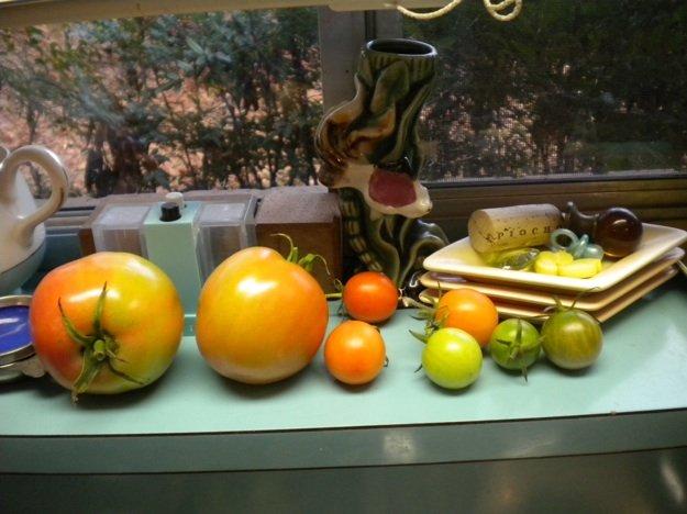 tomatoessillsm.jpg