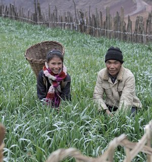 Hailai Yiti and his daughter Hailai Ermen cut fodder near their home in Waxi village, China.