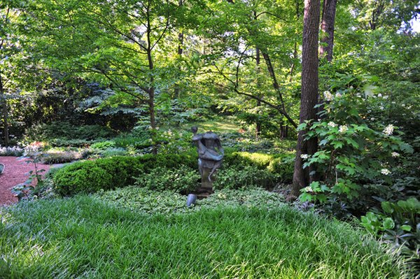 "A densely wooded lot with a single path and no plantings has been transformed into what has been called ""the best woodland garden in the area."""