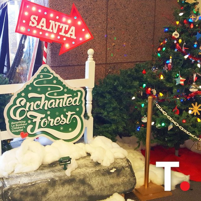 Enchanted Forest: Festival of Trees, Pink Palace
