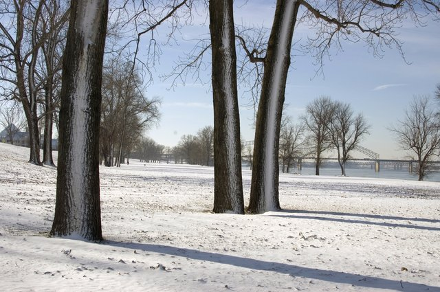 MorningGift-Jan2011 copy.jpg