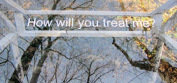 Catherine Pena | How Will You Treat Me?, 2013, environmental installation, dimensions variable  Courtesy of the Artist