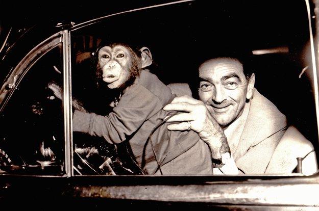Scatter at the wheel of Bill Killebrew's 1952 Pontiac