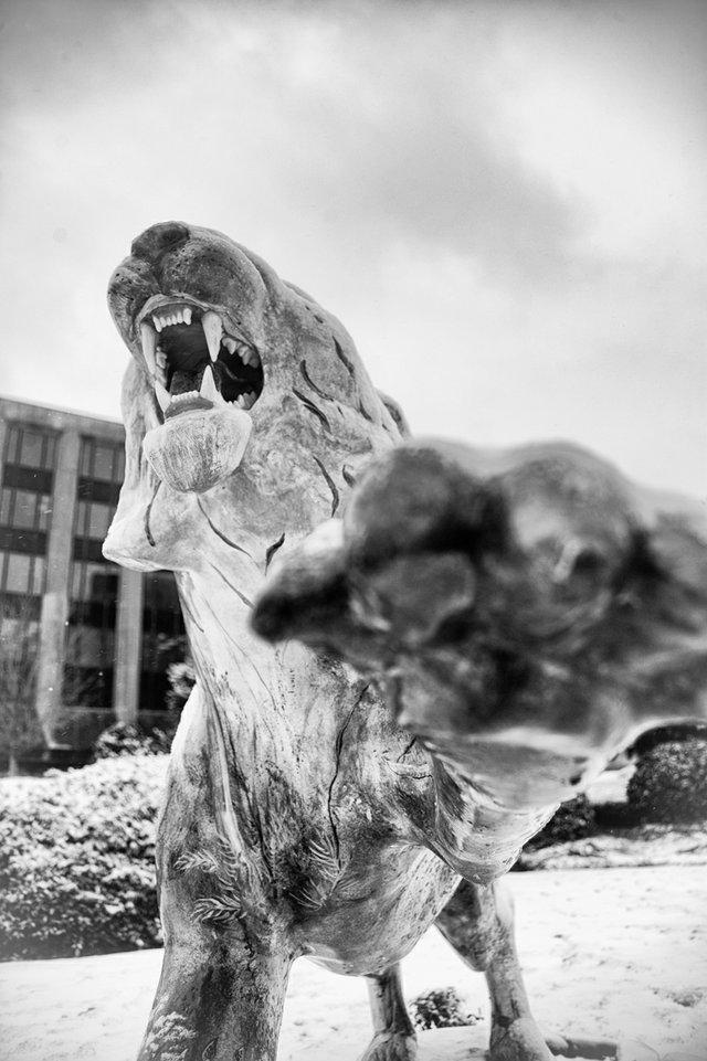 #22 - The Centennial Tigers