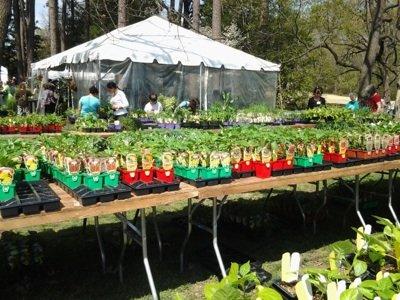 Garden tablessm.jpg