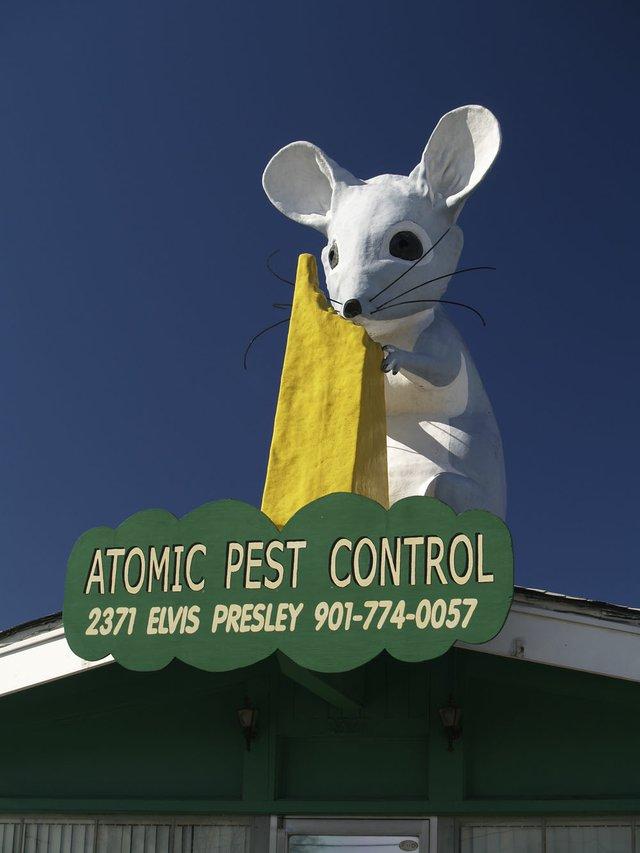 Memphis Legacy Project image: Atomic Pest Control's mouse, 2011