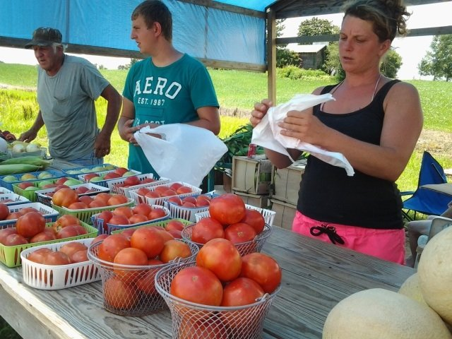 Maw & Paw's farm stand on Highway 51 sells summer produce, including tomatoes, outside of Ripley, Tennessee.