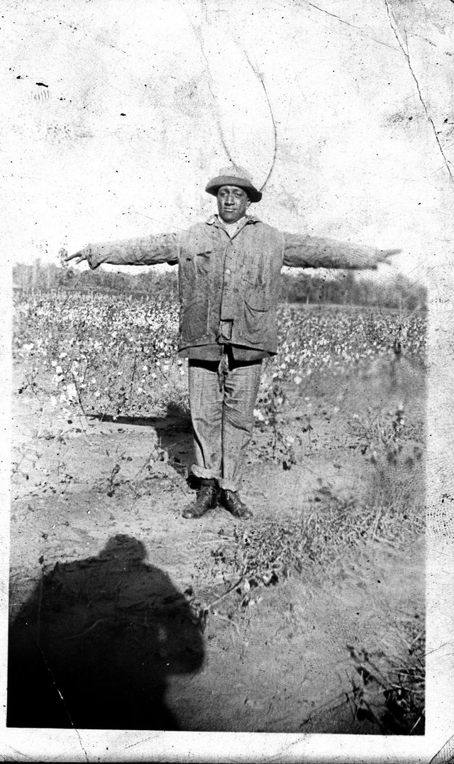 One of the Dixie Jubilee Singers posing in a cotton field for the camera.