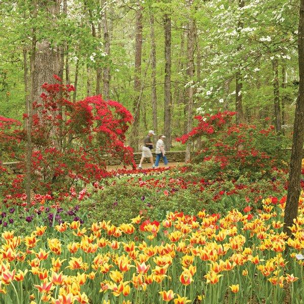 Garvan_Woodland_Gardens1.jpg