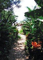 travel_CostaRica.jpg
