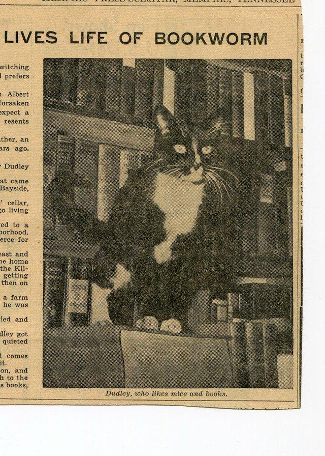Dudley-BookstoreCat-1941-blog.jpg