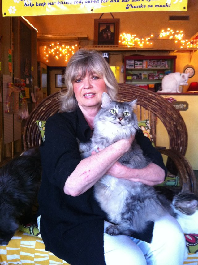 Elain Harvey with Samson, a 9-year-old Maine coon