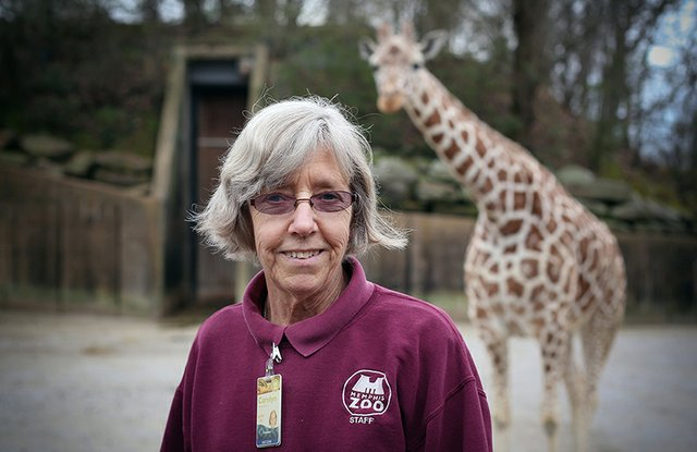 above: The Keepers takes viewers behind the scenes at the Memphis Zoo.