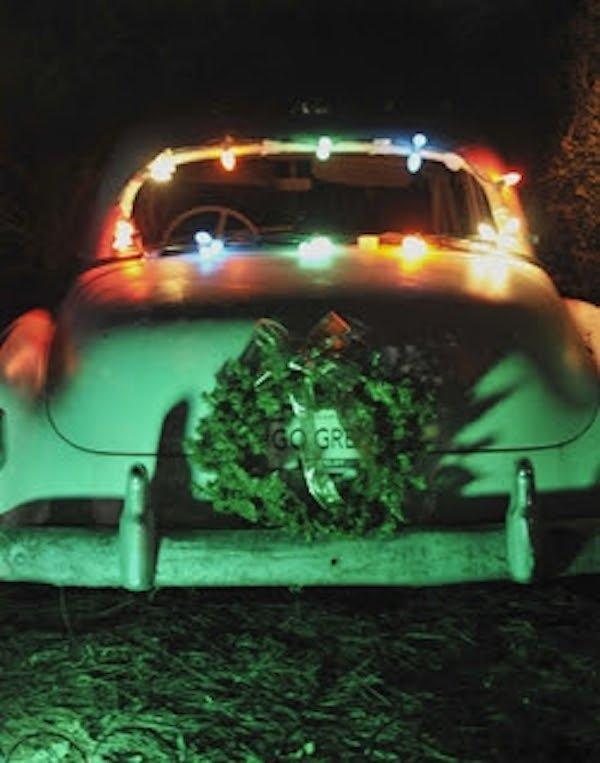 Take a trip to Snowy Nights at Memphis Botanic Garden.